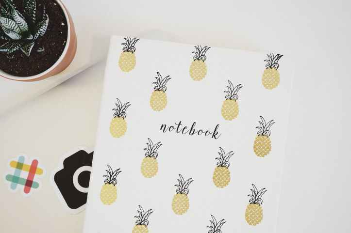 white pineapple print printer paper