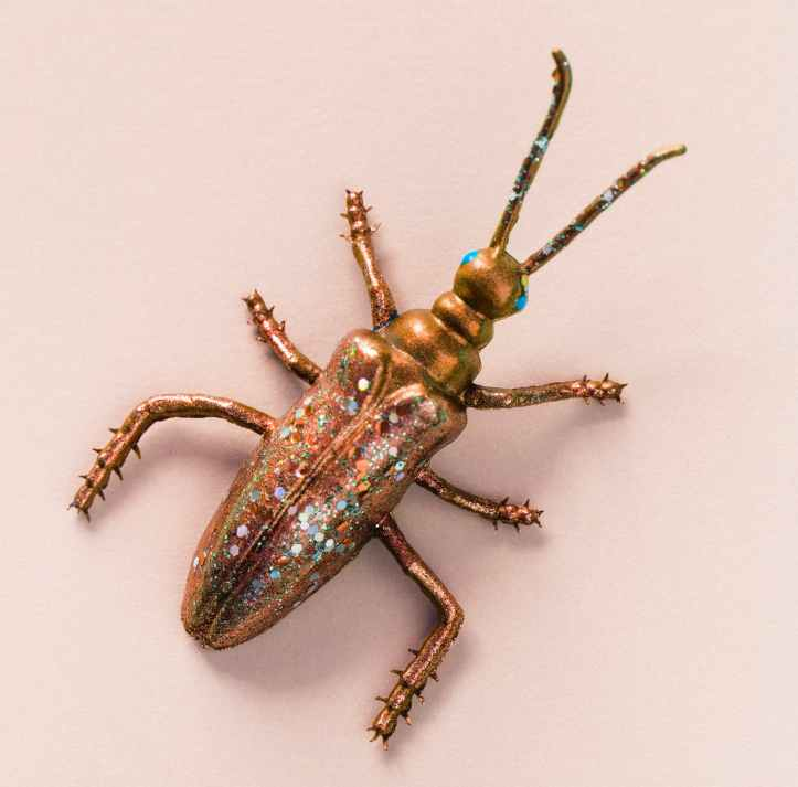 gold colored longhorn beetle